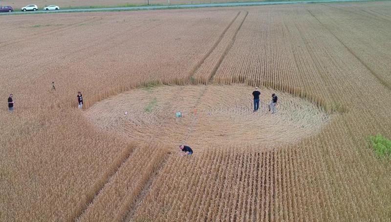 crop circles de 2018 Quebwc2018a
