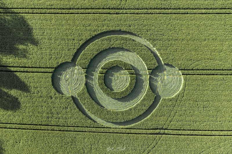 crop circles 2019 DJI0317