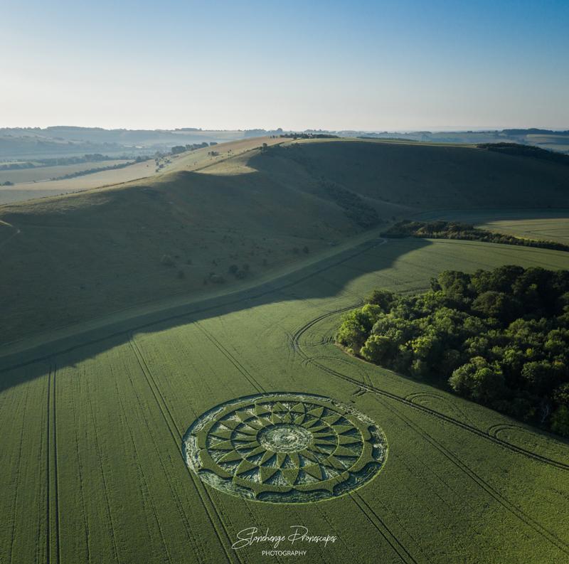 DJI 0878 Pano Resumen de los Últimos Crop Circles reportados