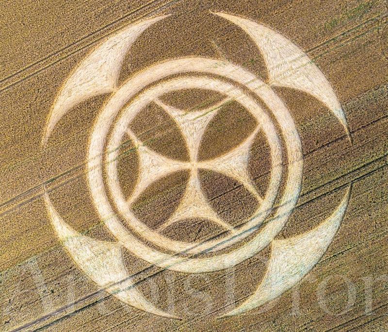 Vimy07072020b Resumen de los Últimos Crop Circles reportados