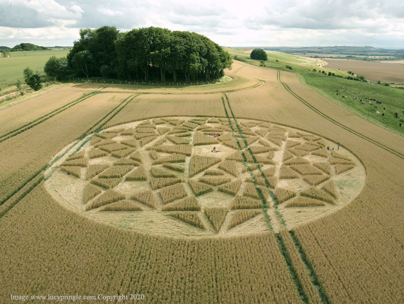 lucy25072020c Se reportan más Crop Circle en distintas partes del mundo este mes