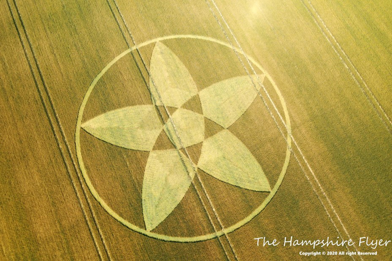 HAMPSHIRE22072020A Se reportan más Crop Circle en distintas partes del mundo este mes